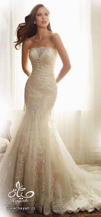 أجمل فساتين الزفاف hayahcc_1429424116_962.jpg