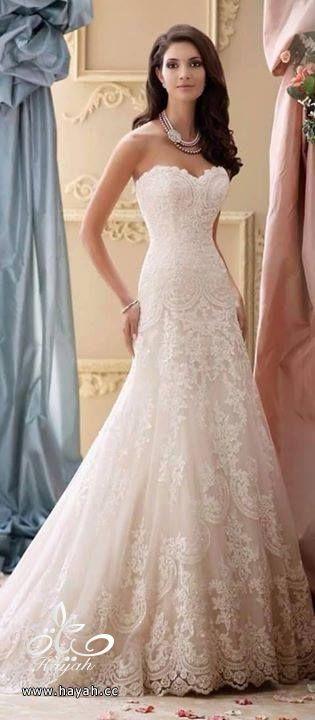 أجمل فساتين الزفاف hayahcc_1429424117_876.jpg