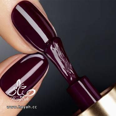 مناكير توتي جميلة جداً hayahcc_1429602521_305.jpg