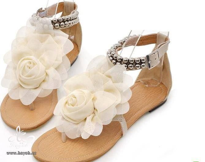أحذية مميزة hayahcc_1430729328_452.jpg