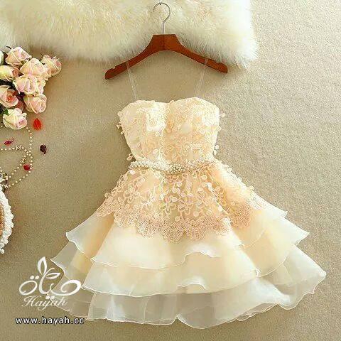 ملابس أنيقة hayahcc_1431942607_606.png