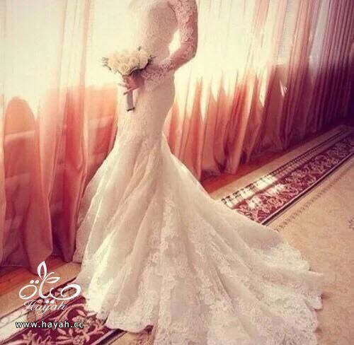 أفخم  فساتين الزفاف hayahcc_1432115513_680.jpg