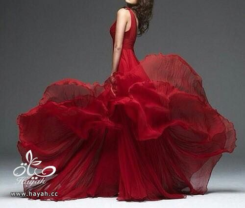 أفخم  فساتين الزفاف hayahcc_1432115514_912.jpg