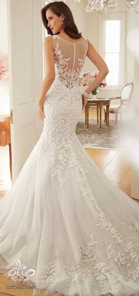أحدث فساتين الزفاف hayahcc_1432634027_675.jpg