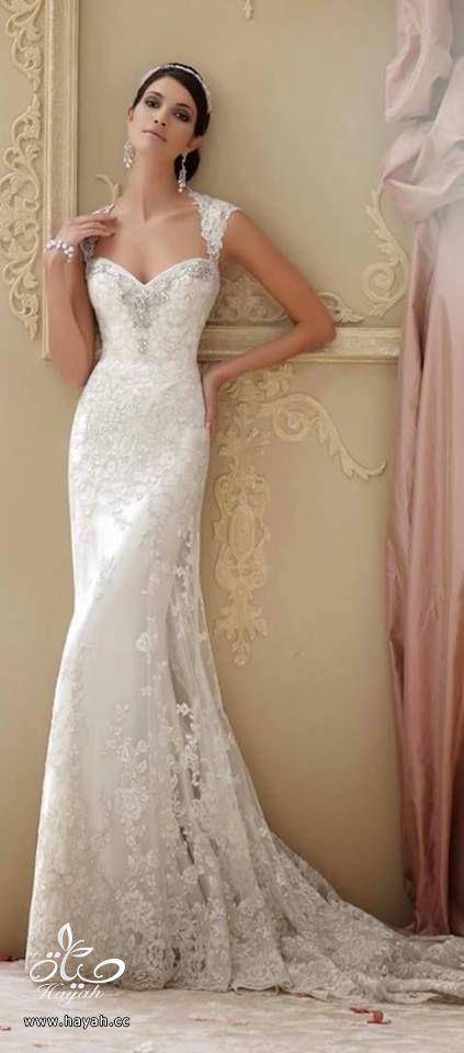 أحدث فساتين الزفاف hayahcc_1432634027_749.jpg