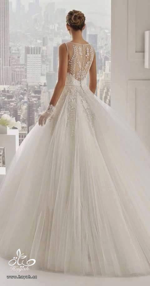 أحدث فساتين الزفاف hayahcc_1432634028_359.jpg