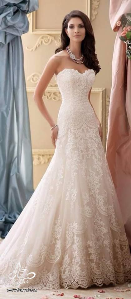 أحدث فساتين الزفاف hayahcc_1432634028_590.jpg