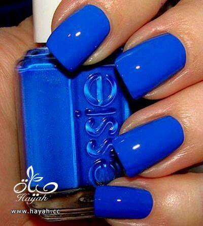 تألقي باللون الأزرق hayahcc_1432708524_431.jpg