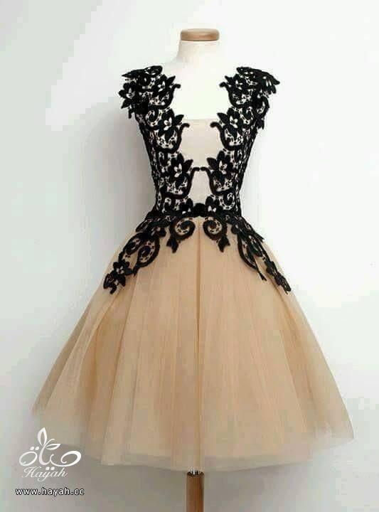 أجمل الفساتين البناتية القصيرة hayahcc_1433400315_858.jpg