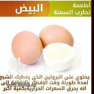 أطعمة تحارب السمنة hayahcc_1434266855_485.jpg