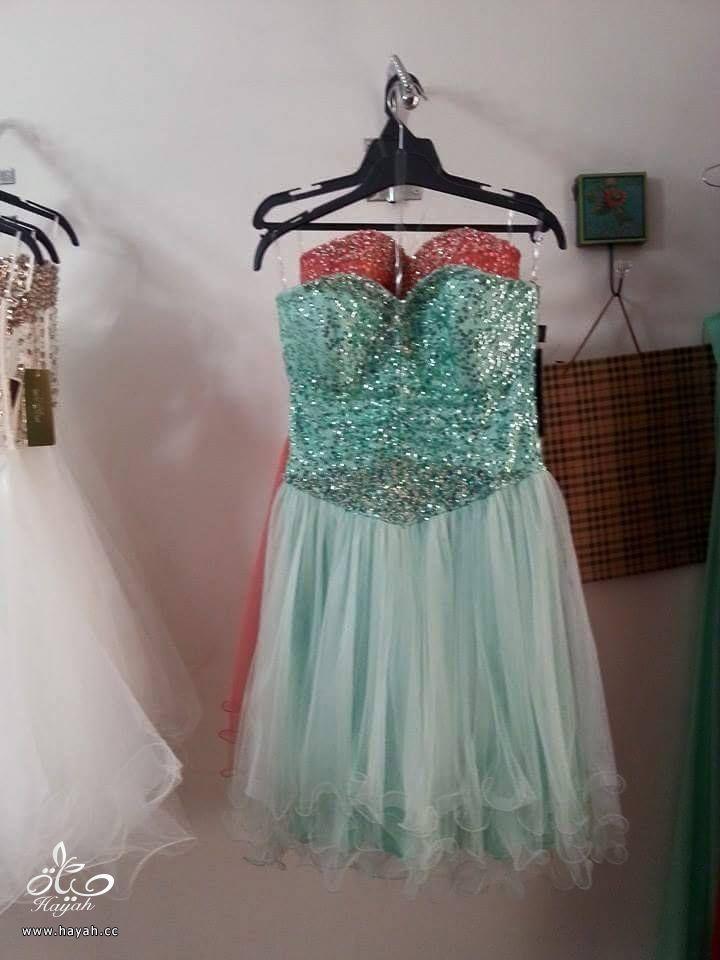 أحدث الفساتين القصيرة hayahcc_1434484649_984.jpg
