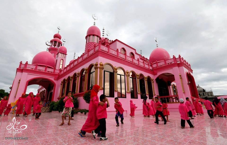 المسجد الوردي في الفلبين hayahcc_1434793780_658.jpg