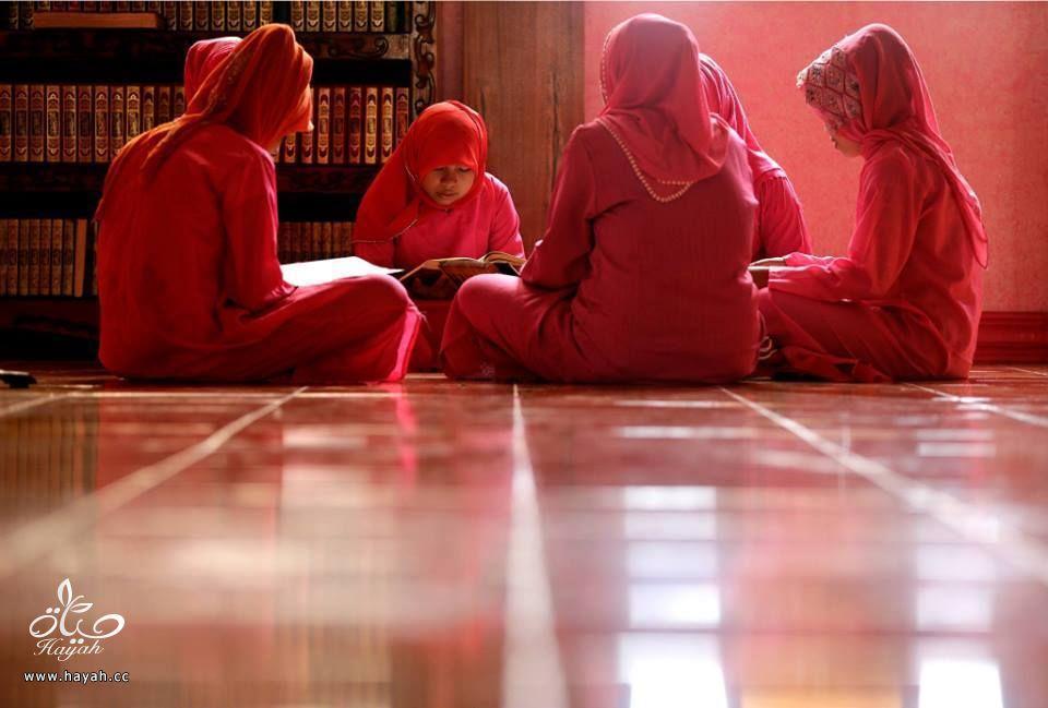 المسجد الوردي في الفلبين hayahcc_1434793780_714.jpg