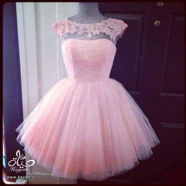 أرقى الفساتين القصيرة hayahcc_1435573600_497.jpg