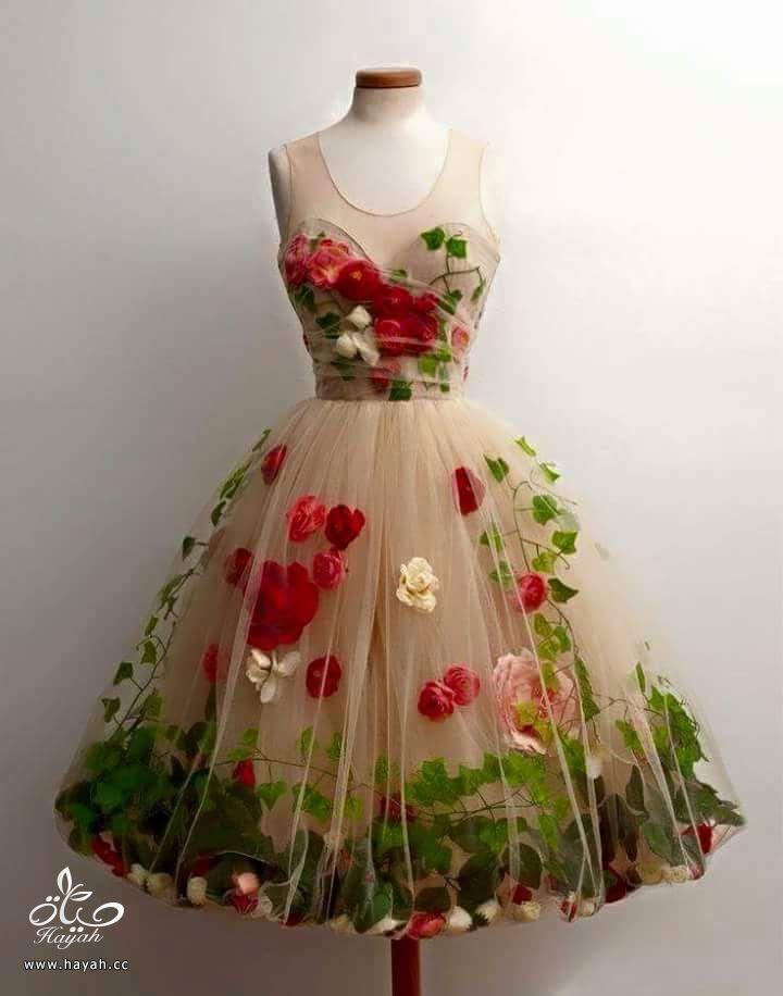 أرقى الفساتين القصيرة hayahcc_1435573600_977.jpg