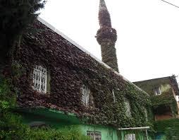 مسجد تغطيه النباتات بشكل كامل hayahcc_1436098125_888.jpg