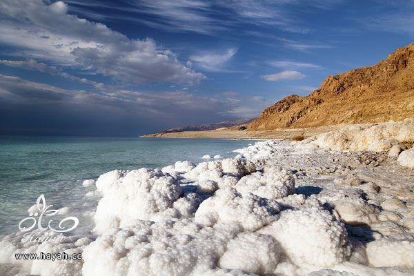 البحر الأشد ملوحة على مستوى العالم hayahcc_1436102151_800.jpg