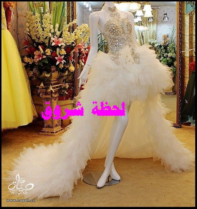 فساتين زفاف hayahcc_1436131816_764.jpg
