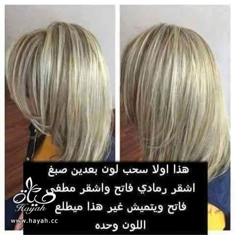الوان صبغات الشعر hayahcc_1436630755_302.jpg