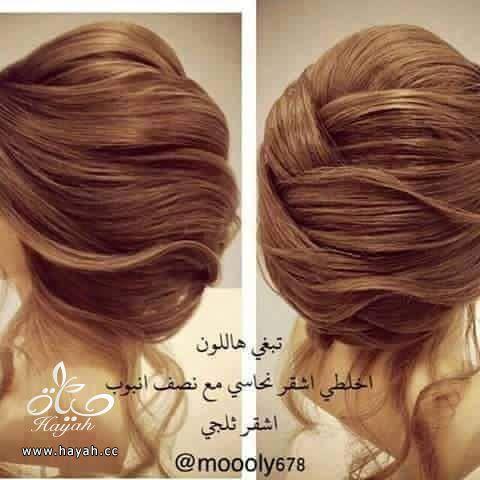 الوان صبغات الشعر hayahcc_1436630755_595.jpg