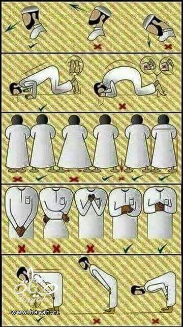 كيفية أداء الصلاة بالطريقة الصحيحة hayahcc_1436695183_784.jpg