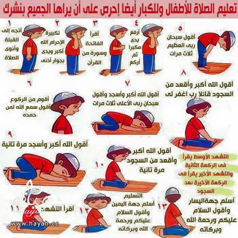 علمي طفلك كيفية الصلاة hayahcc_1436945308_630.jpg