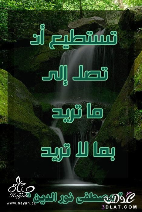 أقوال وحكم مصطفى نور الدين hayahcc_1438690868_136.jpg