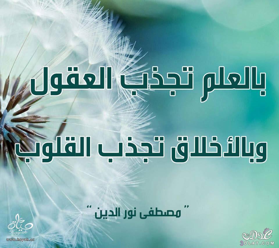 أقوال وحكم مصطفى نور الدين hayahcc_1438690869_524.jpg