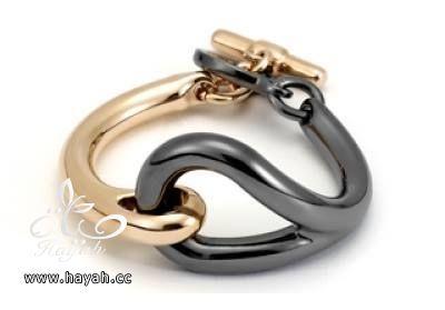 أغرب أشكال المجوهرات hayahcc_1439621831_522.jpg