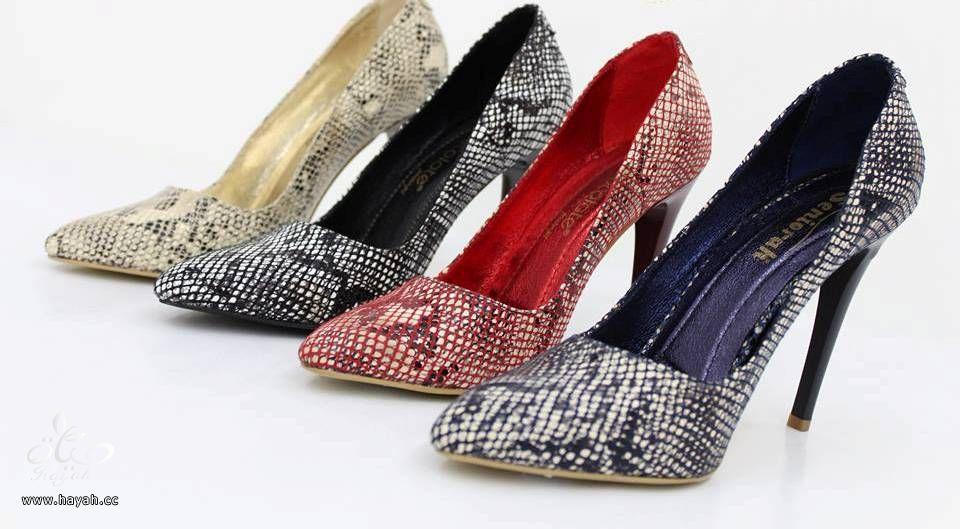 أحذية كعب عالي رائعة hayahcc_1439896946_828.jpg