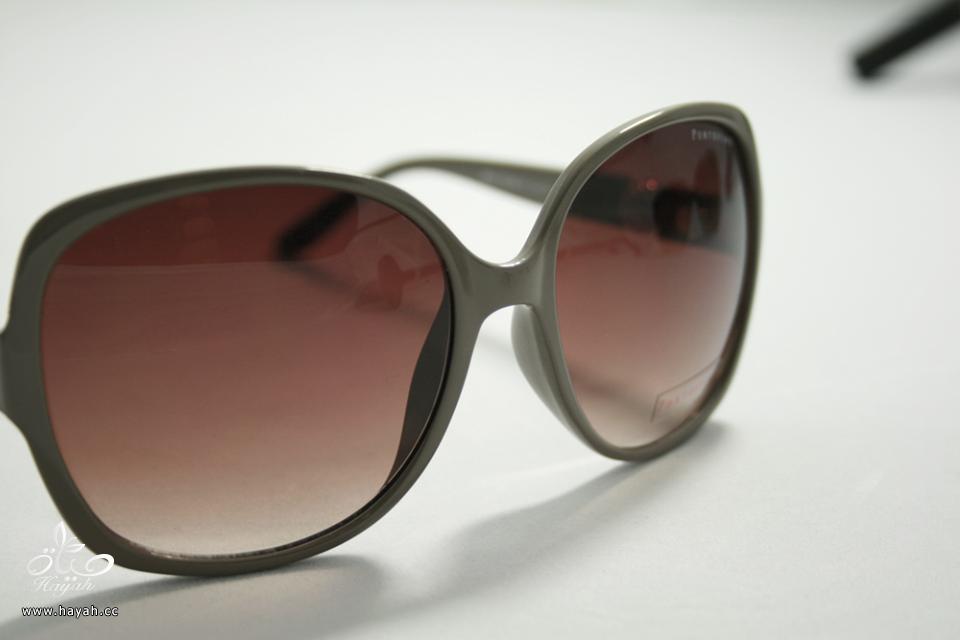 نظارات شمسية آخر موضة hayahcc_1439979601_191.png