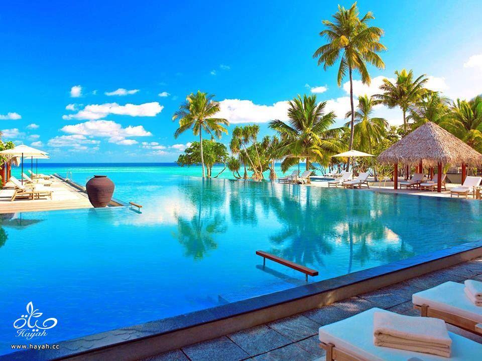 جمال جزر المالديف hayahcc_1440233309_665.jpg