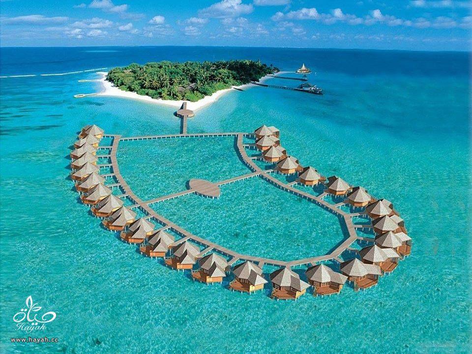 جمال جزر المالديف hayahcc_1440233311_669.jpg