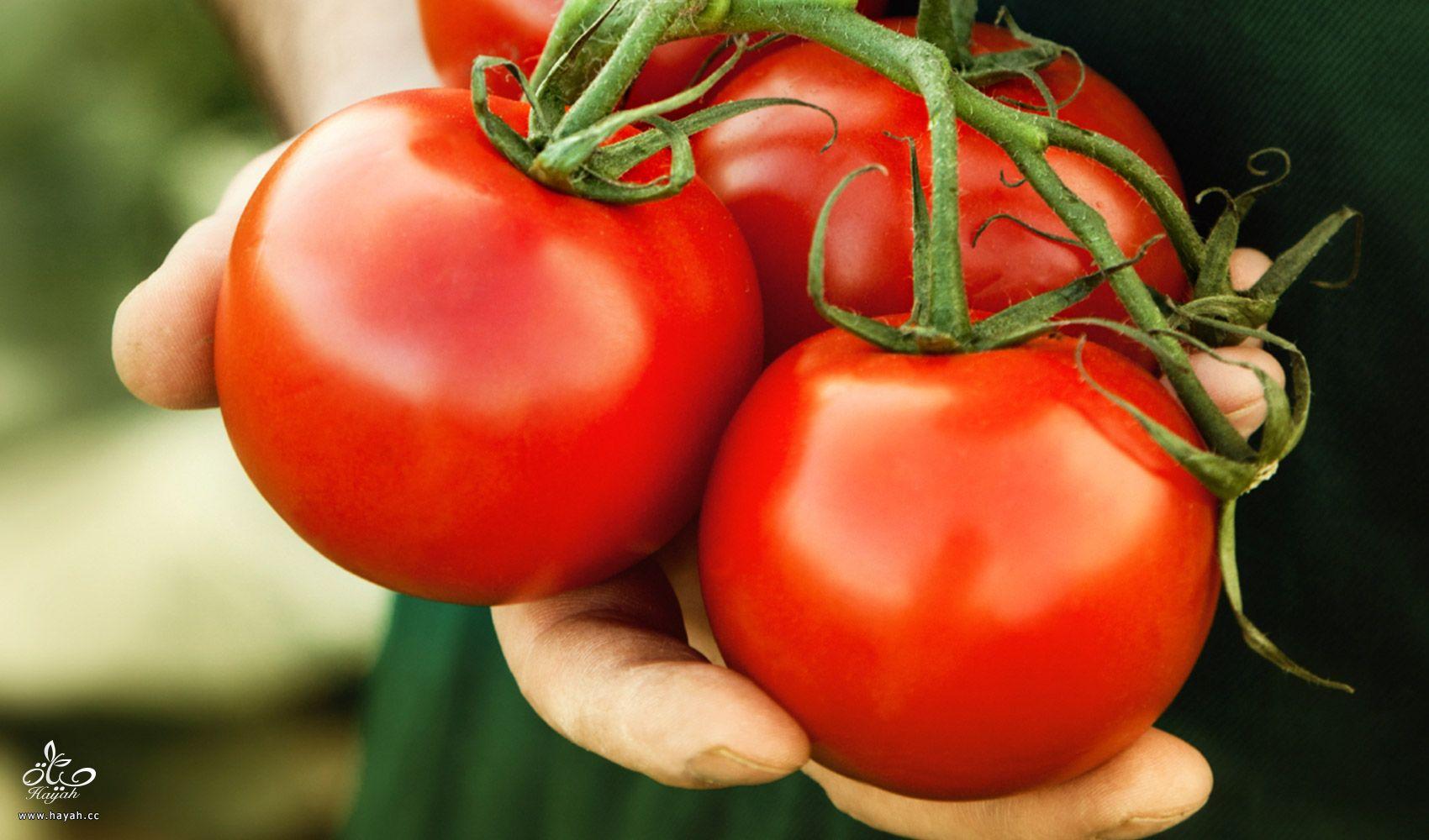 قناع الطماطم للبشره الدهنيه hayahcc_1440452289_212.jpg