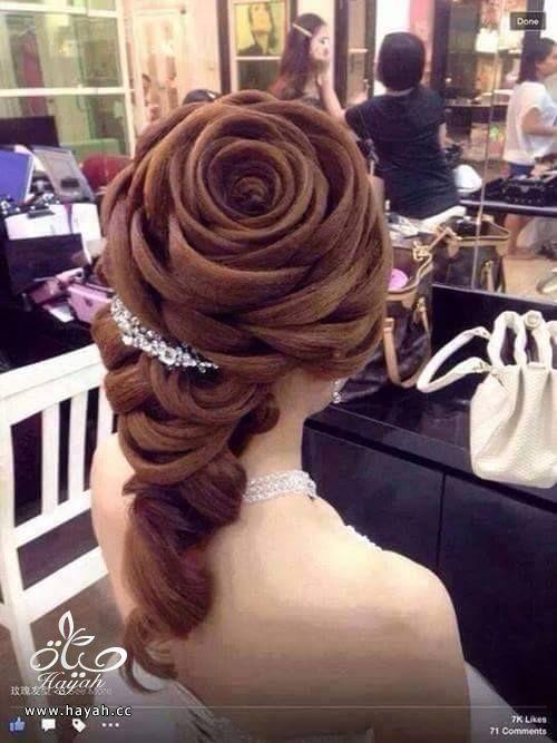 تساريح شعر على شكل ورود hayahcc_1440508414_810.jpg