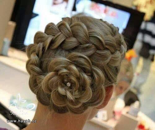 تساريح شعر على شكل ورود hayahcc_1440508415_118.jpg