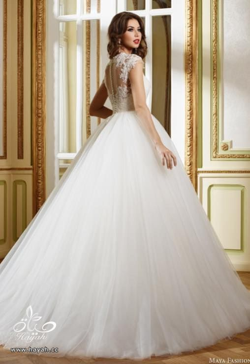 فساتين زفاف بتصاميم غاية في الفخامة والجمال hayahcc_1440549442_584.jpg