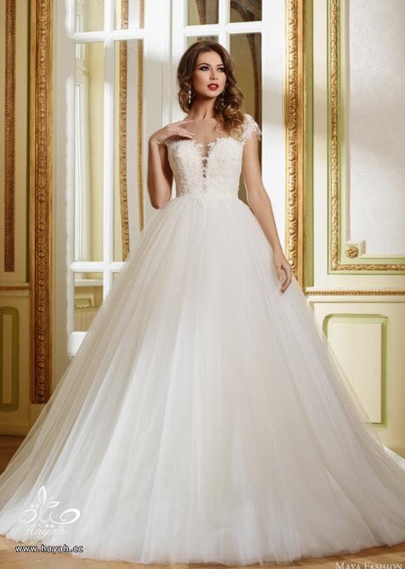 فساتين زفاف بتصاميم غاية في الفخامة والجمال hayahcc_1440549891_672.jpg