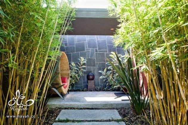 جلسات حدائق هادئة hayahcc_1440572430_390.jpg