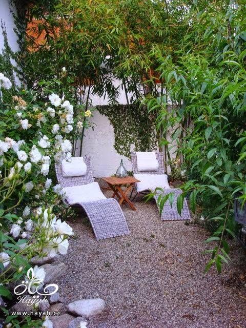 جلسات حدائق هادئة hayahcc_1440572431_522.jpg