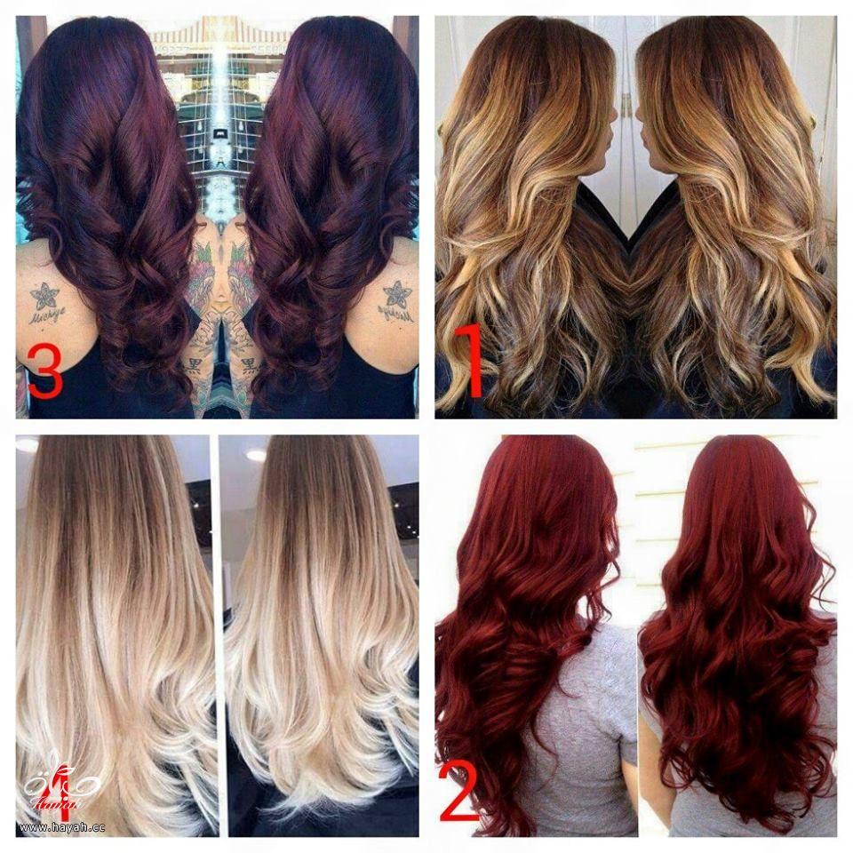 تشكيله كبيره من الوان الشعر hayahcc_1441220934_310.jpg