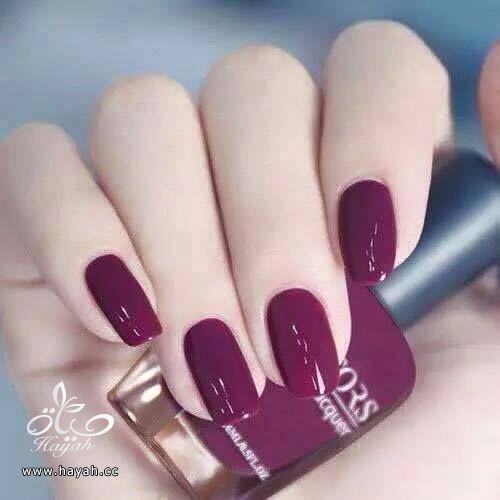 ألوان مناكير جميلة hayahcc_1441468745_145.jpg
