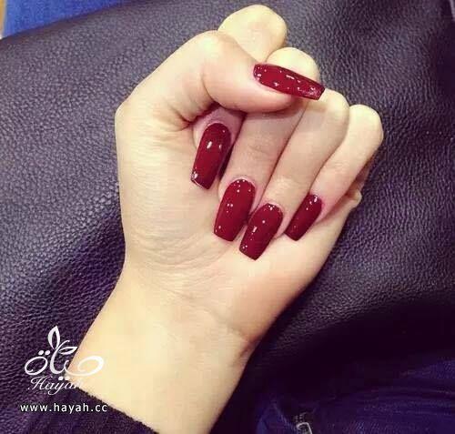 ألوان مناكير جميلة hayahcc_1441468746_841.jpg