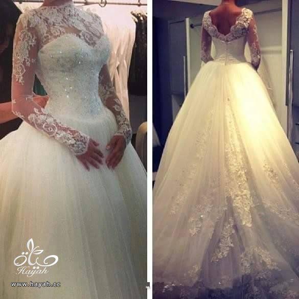 تشكيله من فساتين لتبقي احلي عروسه ليله عمر hayahcc_1441532439_333.jpg