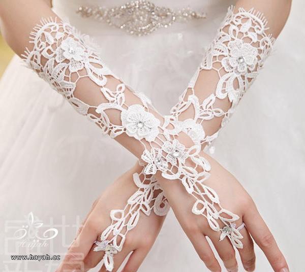 قفازات للعرايس جميلة جدا hayahcc_1441608424_657.png