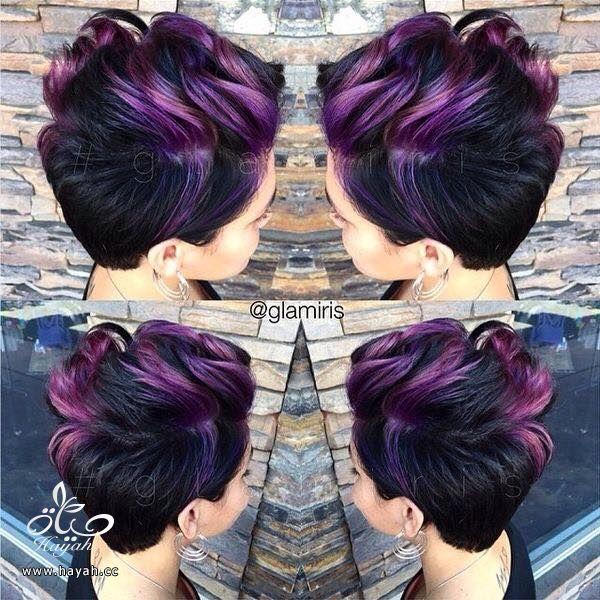 تشكيلة من صبغات الشعر الملونة hayahcc_1441621500_243.jpg