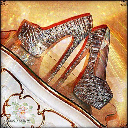 أحذية التايجر المرصعة hayahcc_1441904910_934.jpg