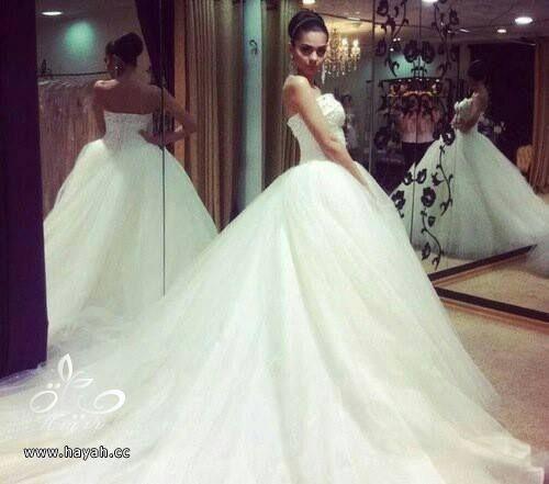 أجمل بدل الزفاف بذيل طويل hayahcc_1442077675_436.jpg