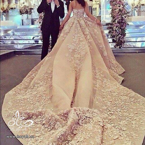 أجمل بدل الزفاف بذيل طويل hayahcc_1442077675_441.jpg