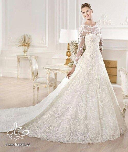 أجمل بدل الزفاف بذيل طويل hayahcc_1442077675_847.jpg
